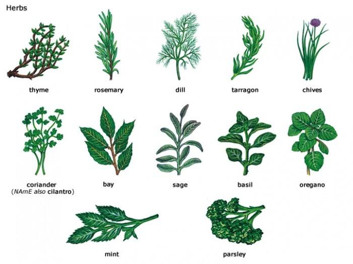 سبزیجات کباب شده