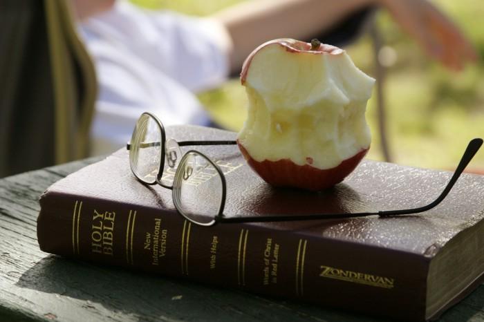 روانشناسی تغذیه - تغذیه و استرس