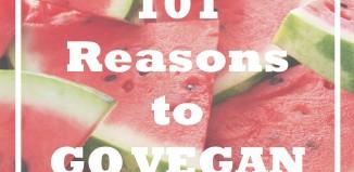 دلیل شماره 1 برای گیاهخواری