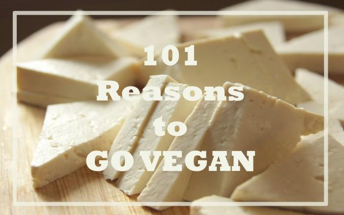 دلیل شماره 4 برای گیاهخواری