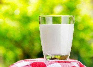 مضرات شیر